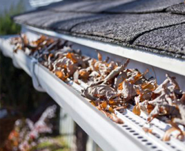 gutter-cleaning-service-